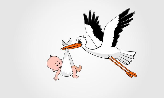 Stork-and-Baby.jpg