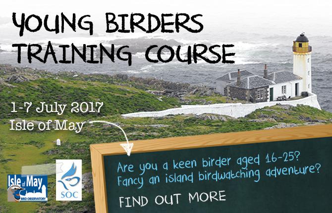 Young birders slide 2017.jpg